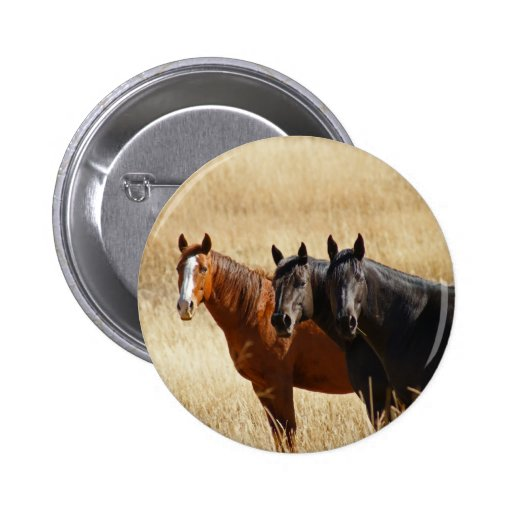 Caballos DSC03898 tres Pin Redondo 5 Cm