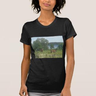 Caballos en el campo camiseta