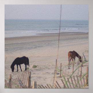 Caballos en la arena poster