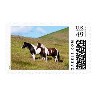 Caballos en la ladera timbres postales