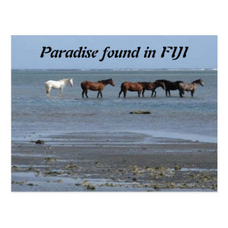 Caballos en la playa en la postal de Fiji