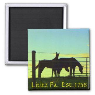 Caballos en la puesta del sol en el PA de Lititz. Imán Cuadrado