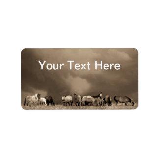 Caballos en las etiquetas de la pradera etiqueta de dirección