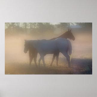 Caballos en niebla de la mañana póster