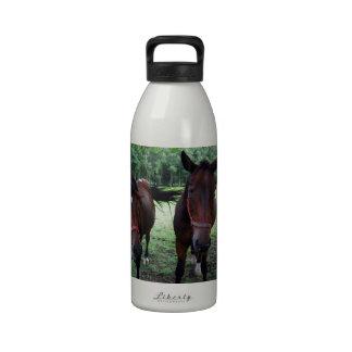 Caballos en pasto botella de beber
