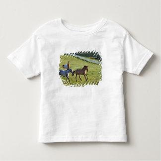 Caballos en pasto cerca de Polson, Montana 2 Camisas