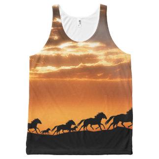 Caballos en puesta del sol