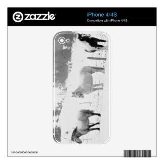 Caballos en rancho iPhone 4 skins