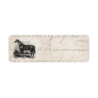 Caballos excelentes retros del caballo de raza de  etiquetas de remite