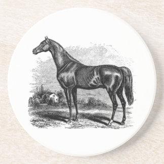 Caballos excelentes retros del caballo de raza de  posavasos diseño