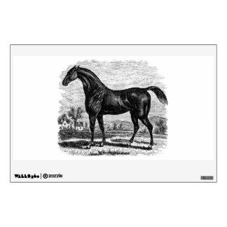 Caballos excelentes retros del caballo de raza de vinilo