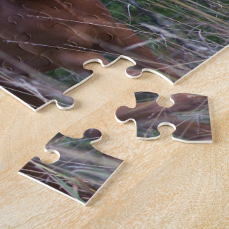 Caballos gemelos puzzles