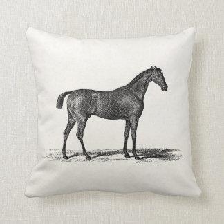Caballos ingleses de la carrera de caballos de la  almohadas