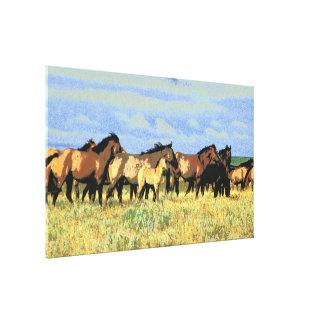caballos lona envuelta para galerias