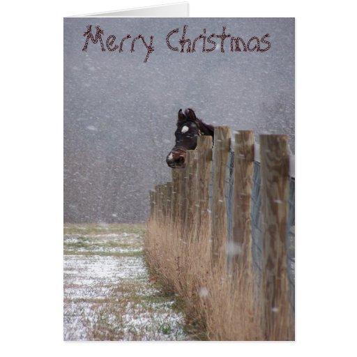 Caballos Nevado, Felices Navidad Tarjeta De Felicitación