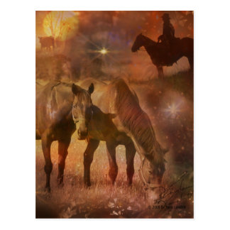Caballos occidentales que pastan postal