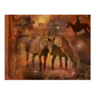 Caballos occidentales que pastan postales