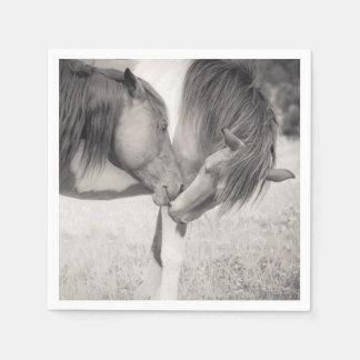 Caballos que besan las servilletas de papel