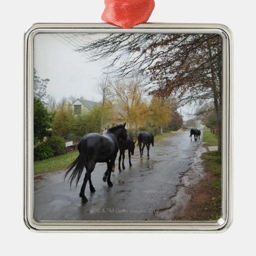 Caballos que caminan abajo de la calle del roble adorno navideño cuadrado de metal
