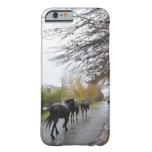 Caballos que caminan abajo de la calle del roble funda de iPhone 6 barely there