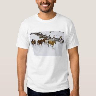 Caballos que corren en nieve playera