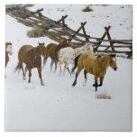 Caballos que corren en nieve tejas