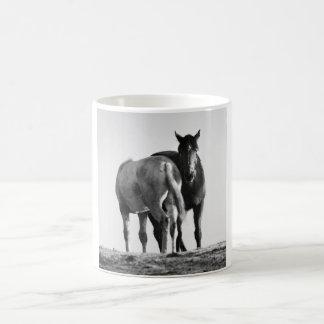 Caballos que pastan la taza