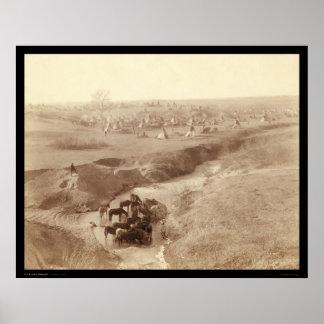 Caballos que riegan en la cala blanca SD 1891 de l Póster