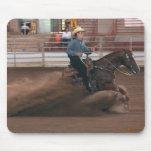 Caballos - RCH - diapositiva del caballo que conti Alfombrillas De Ratón