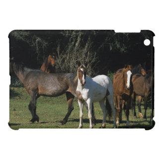 Caballos salvajes 1 del mustango iPad mini carcasas