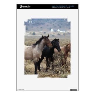 Caballos salvajes 5 del mustango iPad 3 pegatinas skins