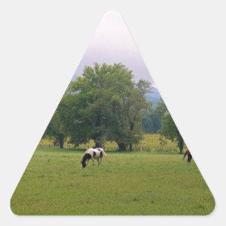 Caballos salvajes de la ensenada de Cades Pegatina Triangular