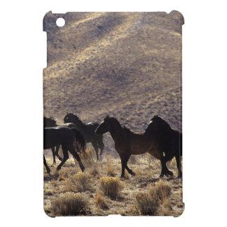 Caballos salvajes del mustango en el desierto 1 iPad mini cobertura