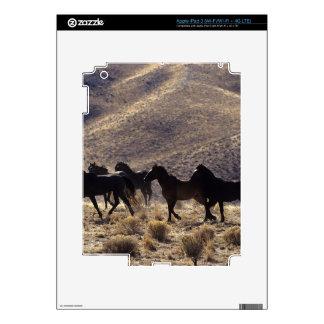 Caballos salvajes del mustango en el desierto 1 iPad 3 pegatina skin