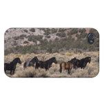 Caballos salvajes del mustango en el desierto 2 iPhone 4 cárcasa
