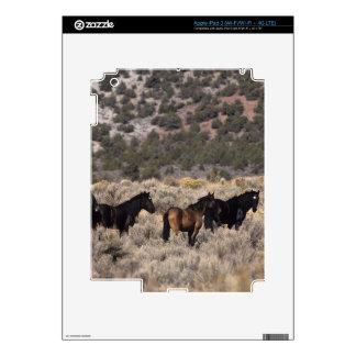 Caballos salvajes del mustango en el desierto 2 iPad 3 pegatina skin