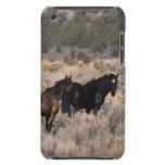 Caballos salvajes del mustango en el desierto 2 iPod Case-Mate carcasas