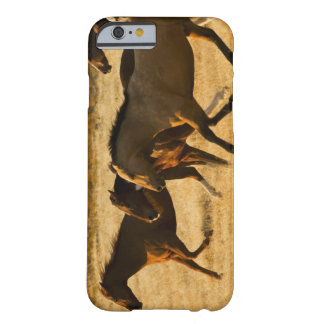 Caballos salvajes funda barely there iPhone 6