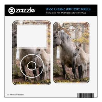 Caballos salvajes calcomanía para el iPod