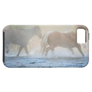 Caballos salvajes que corren a través del agua iPhone 5 Case-Mate coberturas