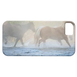 Caballos salvajes que corren a través del agua iPhone 5 Case-Mate cárcasa