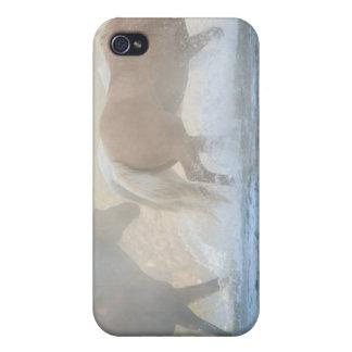 Caballos salvajes que corren a través del agua iPhone 4 funda
