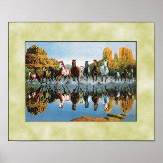 Caballos salvajes que corren a través del agua posters