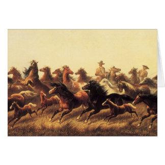 Caballos salvajes Roping del caminante de James Tarjeta De Felicitación