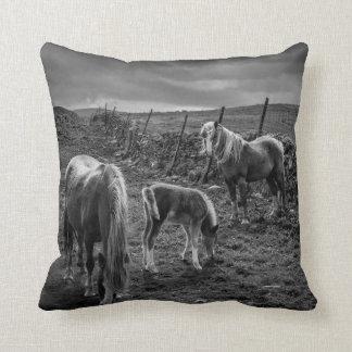 Caballos y almohada del potro