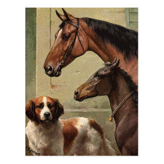 Caballos y arte del vintage de St Bernard Postal