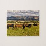 Caballos y colinas puzzles con fotos