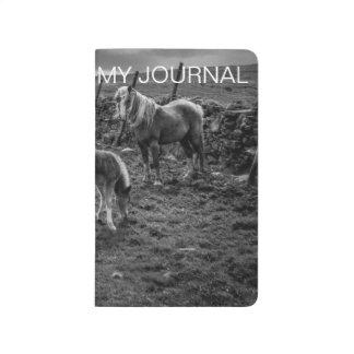 Caballos y diario del potro cuadernos grapados