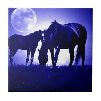 Caballos y noche azul azulejo cuadrado pequeño