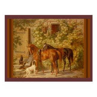 Caballos y perros en yarda estable tarjeta postal